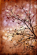 Christine Annas Metal Prints - Burnished Metal Print by Christine Annas