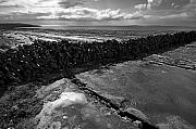 Burren Photo Acrylic Prints - Burren land dividing wall Ireland Acrylic Print by Pierre Leclerc