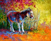 Donkey Painting Posters - Burro And Bouganvillia Poster by Marion Rose