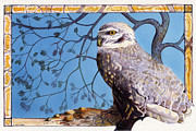 Burrowing Painting Framed Prints - Burrowing Owl Framed Print by A Leon Miler