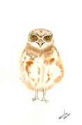 Burrowing Painting Framed Prints - Burrowing Owl Chick Framed Print by Wenfei Tong