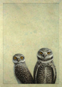 Green Drawings Posters - Burrowing Owls Poster by James W Johnson