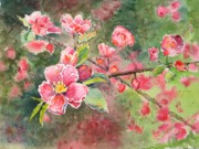 Cherry Blossoms Painting Metal Prints - Burst of Spring Metal Print by Corynne Hilbert