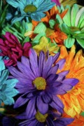 Multicolored Daisy Prints - Bursting Colors Print by John W Smith III