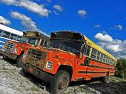 Buses Photos - Bus Graveyard II by Elizabeth Hoskinson