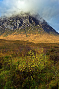 Etive Mor Framed Prints - Bush below the Buckle Framed Print by Gary Eason
