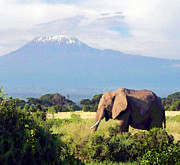 Mt. Kilimanjaro Art - Bush Elephant or Kilimanjaro by Kathryn Elliget
