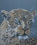 Bush Wildlife Paintings - Bushveld Cat by Elani Van der Merwe