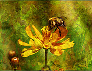 Layered Framed Prints - Busy Busy Honey Bee Framed Print by J Larry Walker