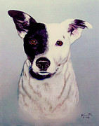 Canine Mixed Media Prints - Butch the Smooth Fox Terrier Print by Nadine and Bob Johnston