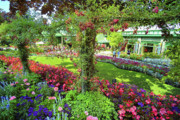 Garden Flowers Photo Originals - Butchart Gardens 1 by Lawrence Christopher