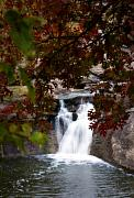 Falls Art - Butcher Falls in Autumn Colors by Fred Lassmann