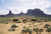 Wild Horses Framed Prints - Butte Rock Formation Framed Print by Dirk Wiersma