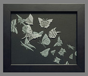 Etching Glass Art Prints - Butterflies Print by Akoko Okeyo