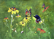 Art That Pops Framed Prints - Butterflies and Flowers Framed Print by Donna Wiegand