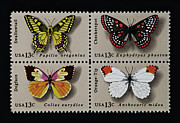 Checkerspot Posters - Butterflies postage stamp print Poster by Andy Prendy