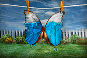 Lepidopterist Posters - Butterfly - Morpho - I hate it when the colors run Poster by Mike Savad