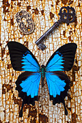 Blue Table Framed Prints - Butterfly and Key Framed Print by Garry Gay