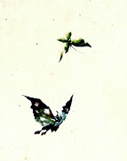 Sketchbook Photo Prints - Butterfly and Moth 1840 Print by Padre Art