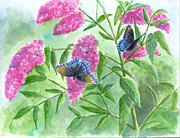 Original Watercolor Paintings - Butterfly Bush by Sheryl Heatherly Hawkins