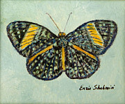 Original Art Originals - Butterfly by Enzie Shahmiri