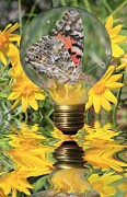 Reflecting Water Mixed Media Posters - Butterfly In A Bulb II Poster by Shane Bechler