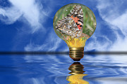 Reflecting Water Mixed Media Prints - Butterfly In Lightbulb - Landscape Print by Shane Bechler
