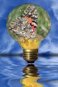 Reflecting Water Mixed Media Prints - Butterfly In Lightbulb Print by Shane Bechler