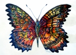Orange Drawings Posters - Butterfly Poster by Mindy Newman