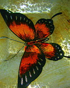 Joyce Woodhouse Posters - Butterfly on glass . Poster by Joyce Woodhouse