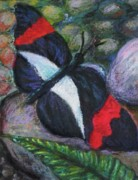 Perched Mixed Media Posters - Butterfly Resting Poster by Emily Michaud