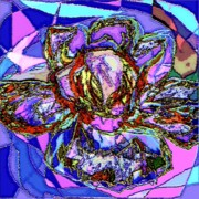 Abstract Art Art - Butterfly Rose by Navo Art