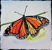 Antennae Painting Prints - Butterfly Print by Teresa Beyer