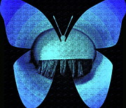 Blue. Dream Posters - Butterfly Vision Poster by Gwyn Newcombe