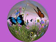 Susan  Solak - Butterfly World