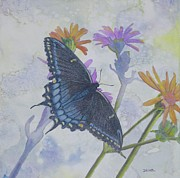 Robert Decker - Butterly