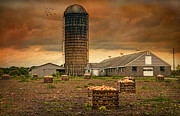 Scenic Barn Posters - Butternut Sunset Poster by Robin-Lee Vieira