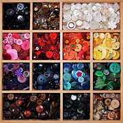 Large Group Of Objects Art - Button Tray by Lisa Stokes