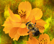 Backyard Garden Posters - Buzzy The Honey Bee Poster by J Larry Walker