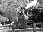 Black And White Pyrography Posters - bw 33 - Roaring Camp Railroad  Poster by Chris Berry