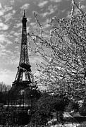 1970s Originals - BW France Paris Eiffel tour 1970s by Issame Saidi