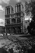 1970s Originals - BW France Paris Notre Dame Cathedral 1970s by Issame Saidi