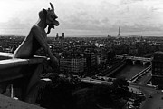 1970s Originals - BW France Paris Notre Dame Cathedral the devil 1970s by Issame Saidi