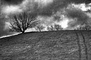 Chuck Kuhn - BW Hills