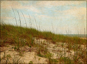 By The Sea Print by Judi Bagwell