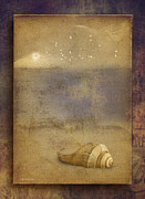 Sea Shell Digital Art Posters - By The Sea Poster by Ron Jones