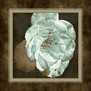 Vintage Rose Framed Prints - Bygone Days Framed Print by Bonnie Bruno