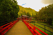 Your Home Framed Prints - Byodo-In Temple Framed Print by Cheryl Young