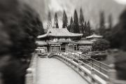 Manicured Prints - Byodo-In Temple Print by Ron Dahlquist - Printscapes