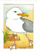 Sea Birds Paintings - C. Gull by Terry Taylor